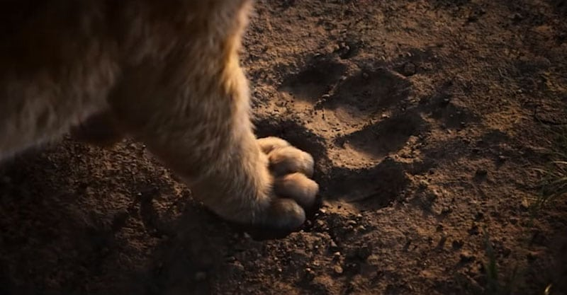 Disney's New Lion King Trailer Broke Records In Less Than 24 Hours