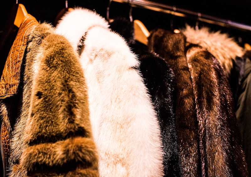 Los Angeles Is Becoming The Biggest City In The U.S. To Ban Fur Sales