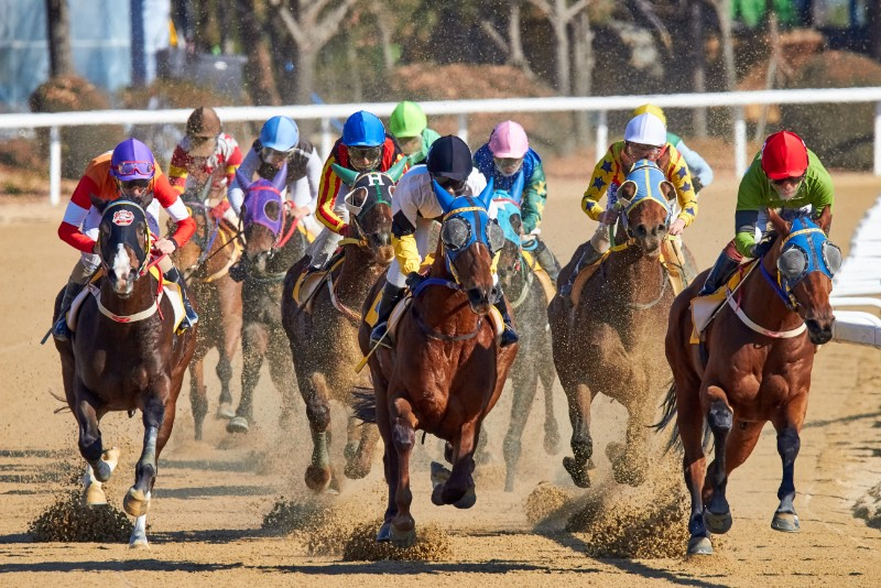 Los Angeles May Soon Be The First Major City To Ban Horse Racing