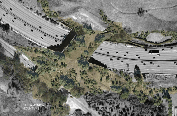 The 101 Will Feature The World's Largest Highway Overpass For Wildlife By 2023