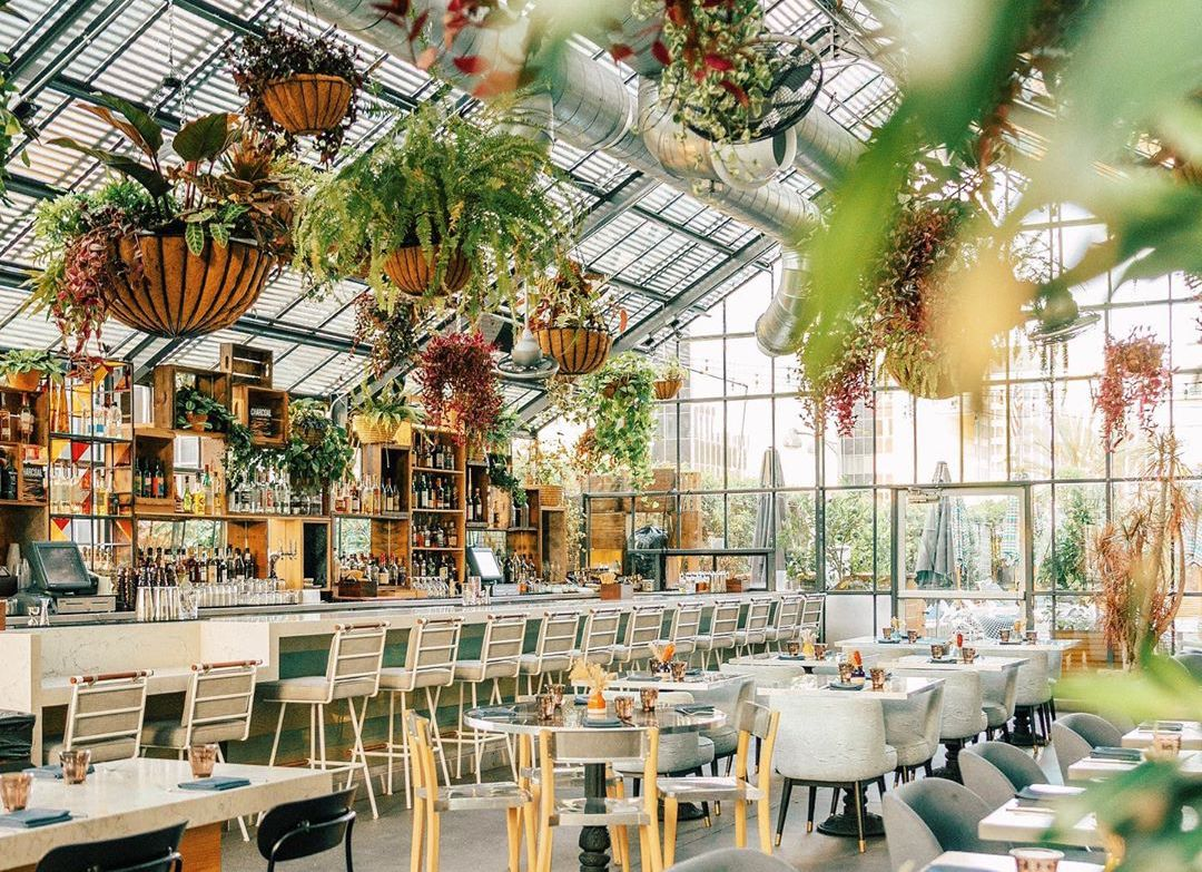 There's A Beautiful Restaurant Inside Of A Twinkling Greenhouse In K-Town • Openaire