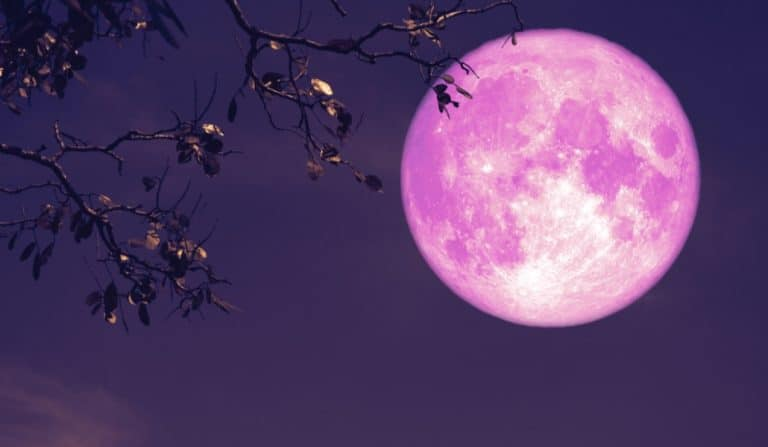 Look Out For The Biggest & Brightest Supermoon Of 2020 Tonight