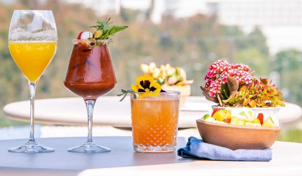 Spend Your Summer Sipping On Botanical Cocktails And Eating Fine Italian Food At This Rooftop Haven